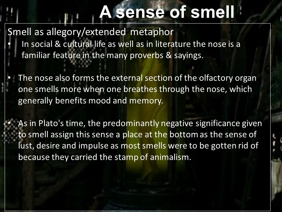 A sense of smell Smell as allegory/extended metaphor