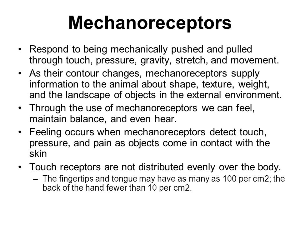 Mechanoreceptors Respond to being mechanically pushed and pulled through touch, pressure, gravity, stretch, and movement.