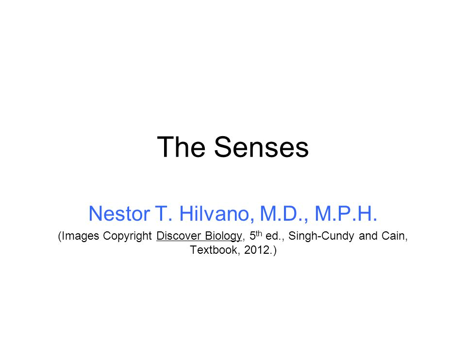 The Senses Nestor T. Hilvano, M.D., M.P.H.