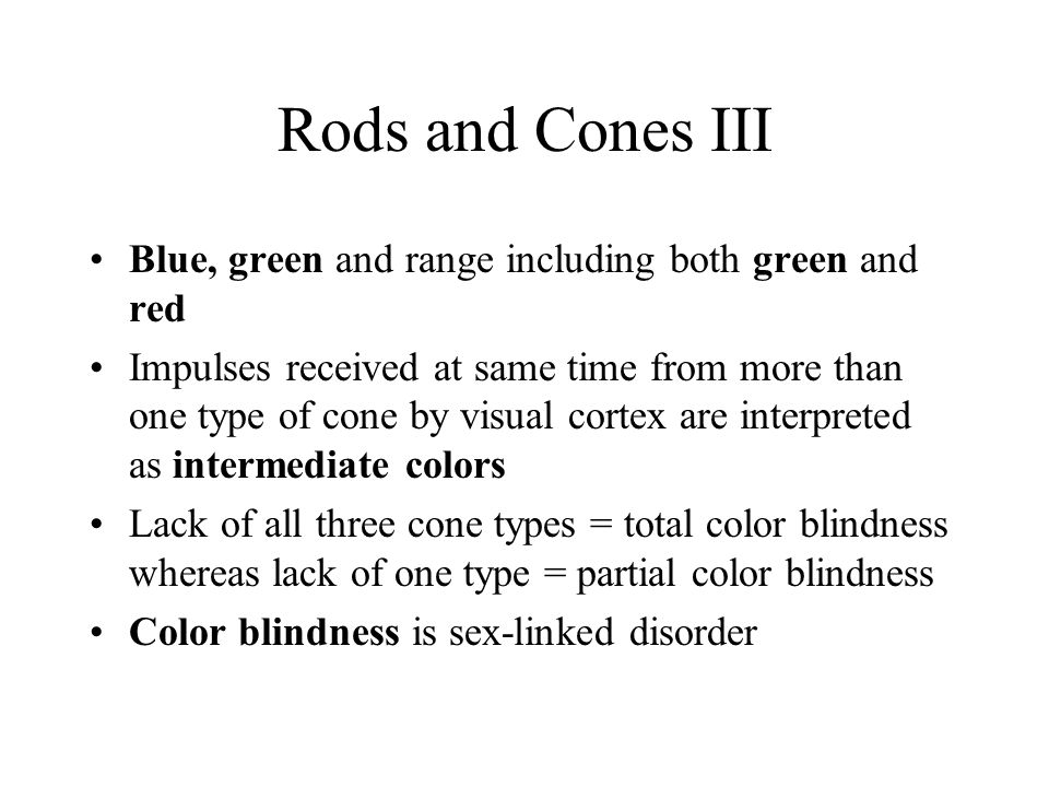 Rods and Cones III Blue, green and range including both green and red