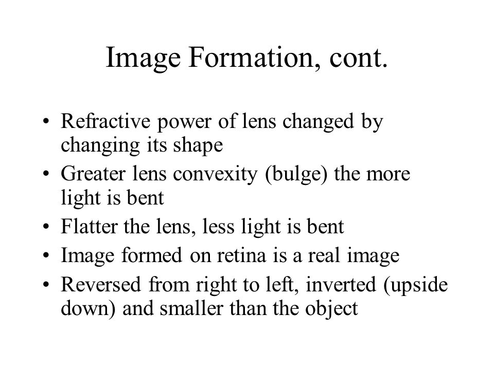 Image Formation, cont. Refractive power of lens changed by changing its shape. Greater lens convexity (bulge) the more light is bent.