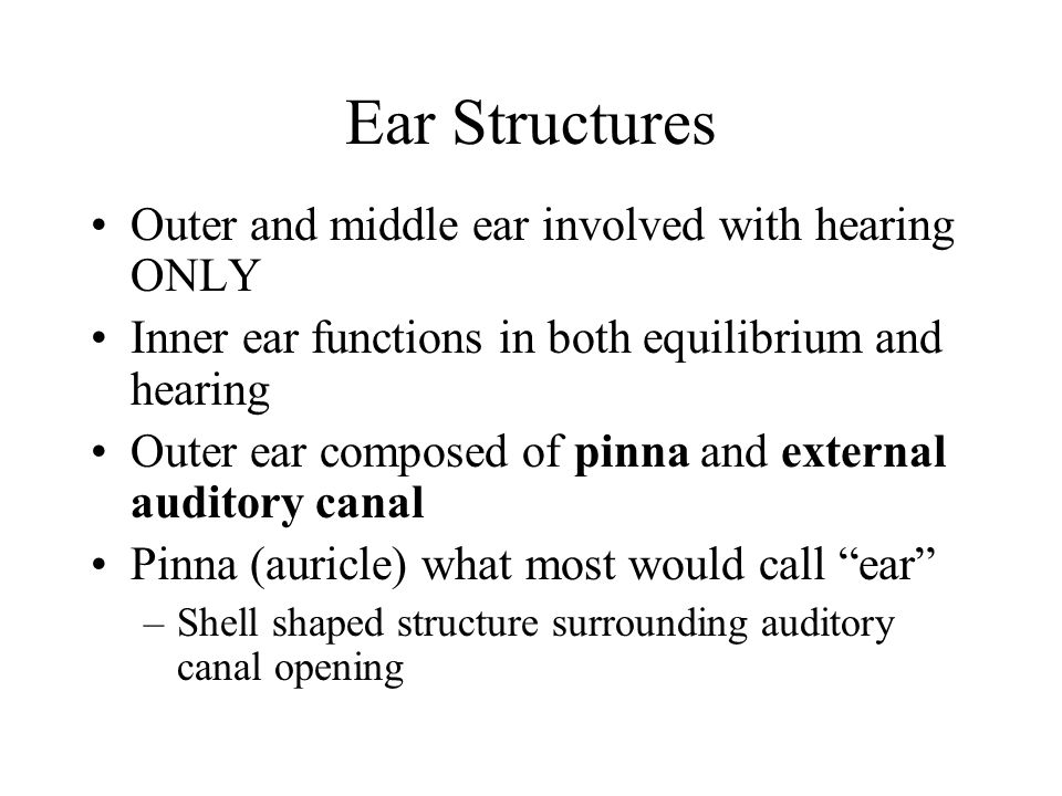 Ear Structures Outer and middle ear involved with hearing ONLY
