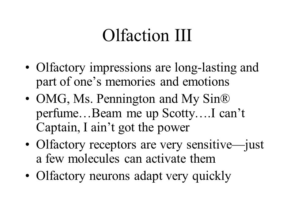 Olfaction III Olfactory impressions are long-lasting and part of one's memories and emotions.