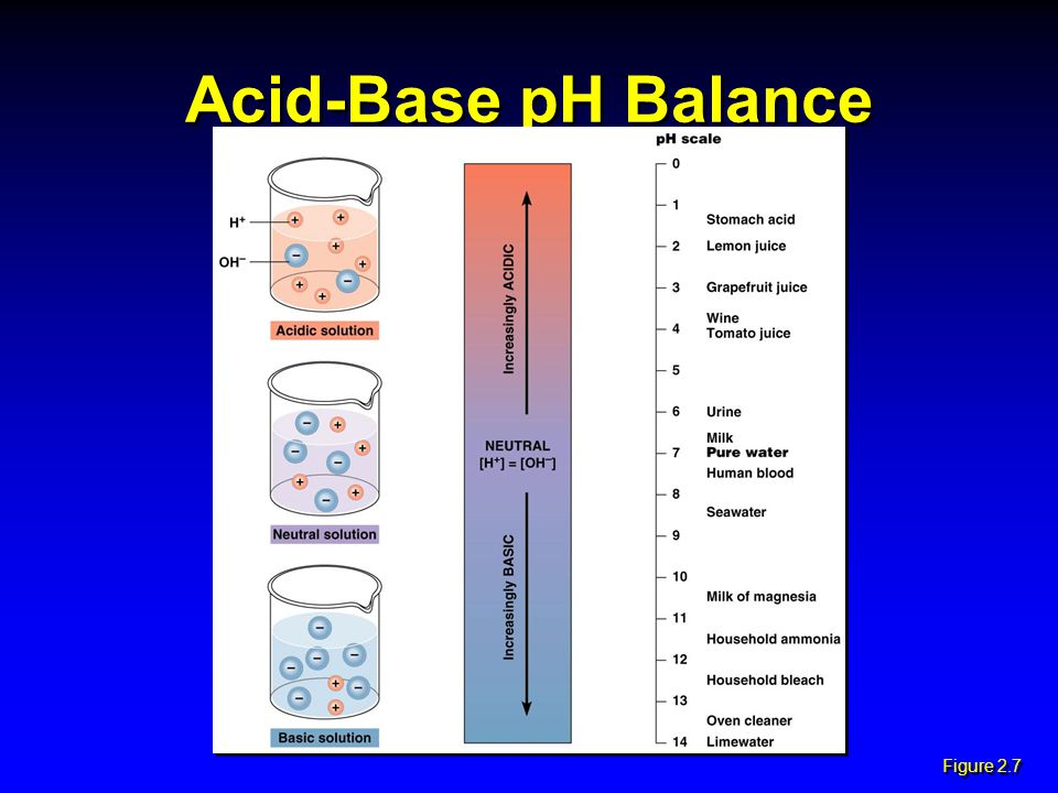 Acid-Base pH Balance Figure 2.7