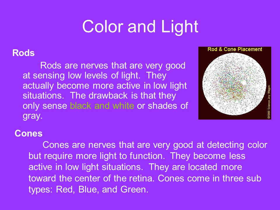 Color and Light Rods.