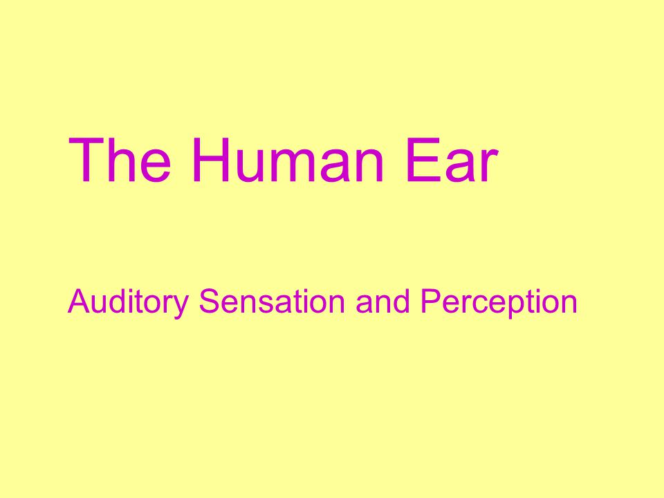 Auditory Sensation and Perception