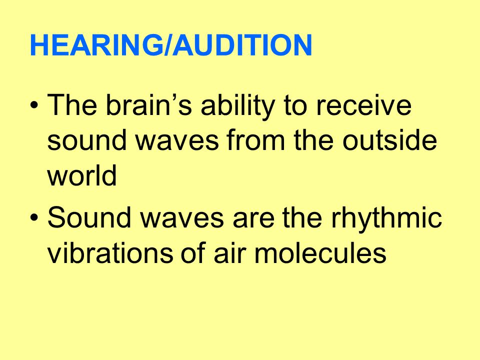 HEARING/AUDITION The brain's ability to receive sound waves from the outside world.