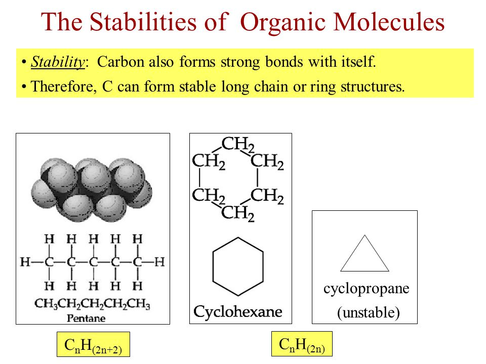 The Stabilities of Organic Molecules