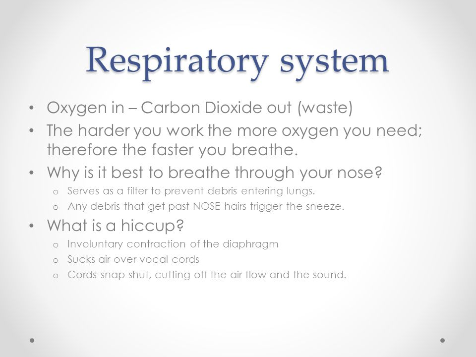 Respiratory system Oxygen in – Carbon Dioxide out (waste)