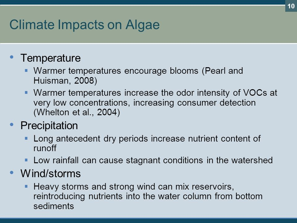Climate Impacts on Algae