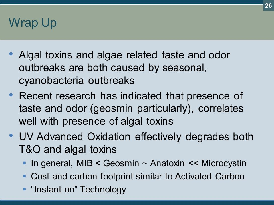Wrap Up Algal toxins and algae related taste and odor outbreaks are both caused by seasonal, cyanobacteria outbreaks.