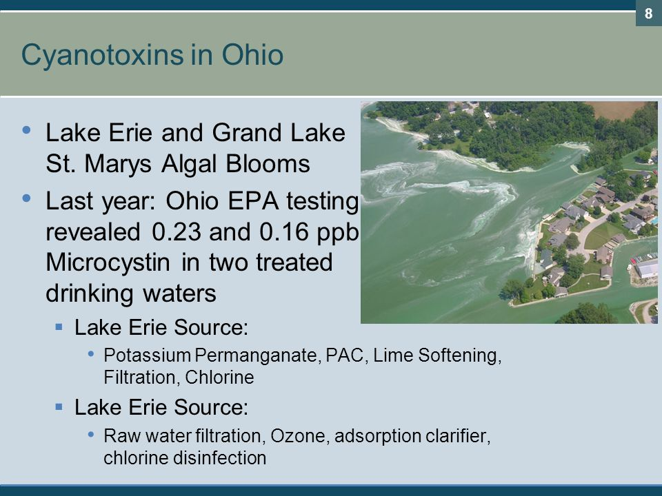 Cyanotoxins in Ohio Lake Erie and Grand Lake St. Marys Algal Blooms