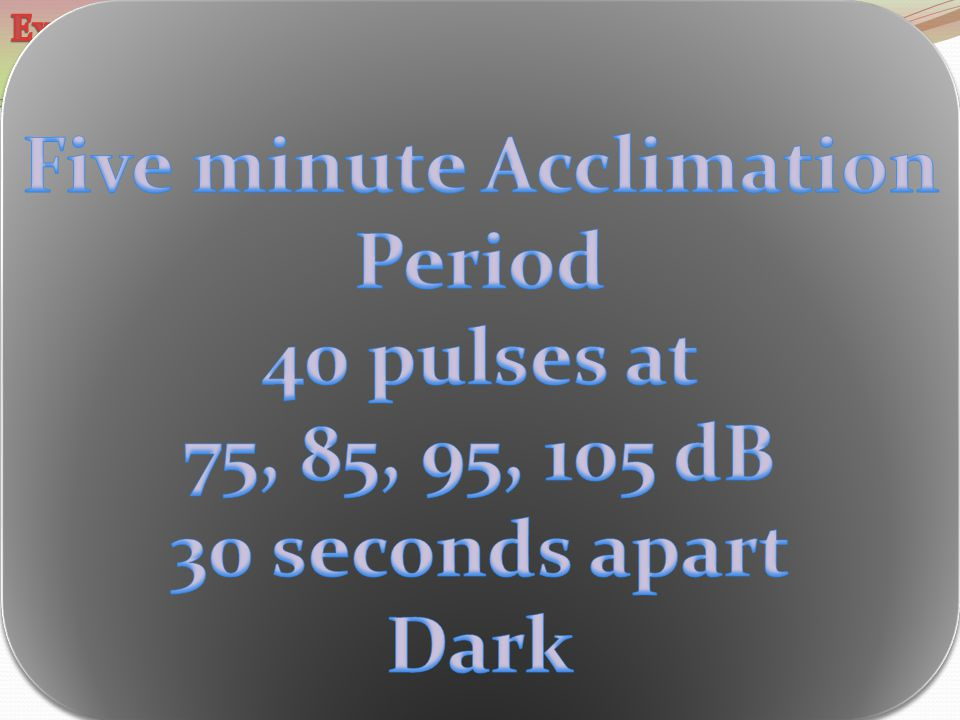 Five minute Acclimation Period