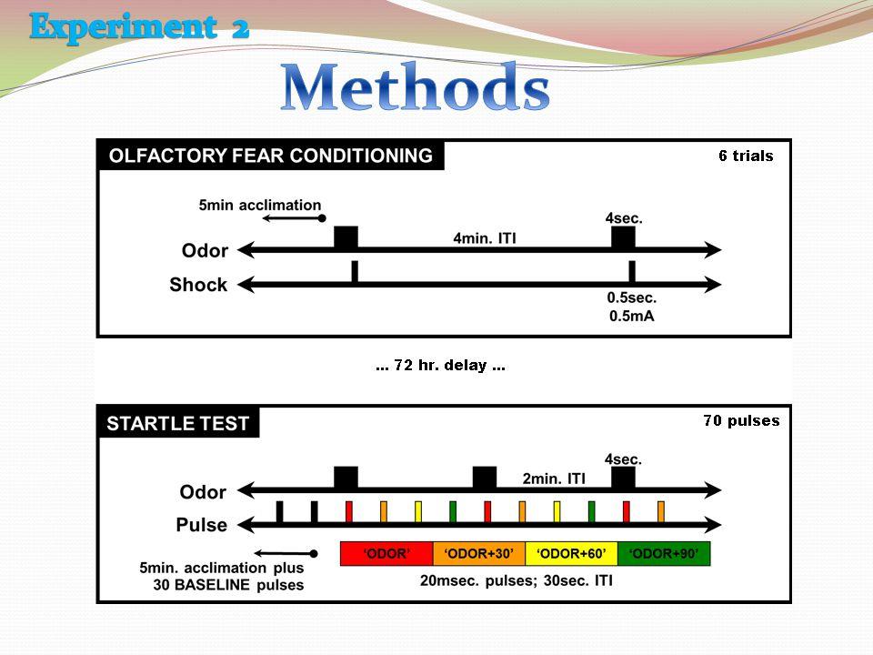 Experiment 2 Methods