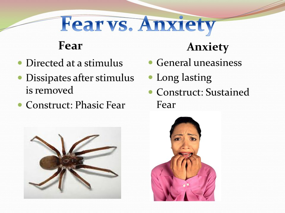 Fear vs. Anxiety Fear Anxiety Directed at a stimulus
