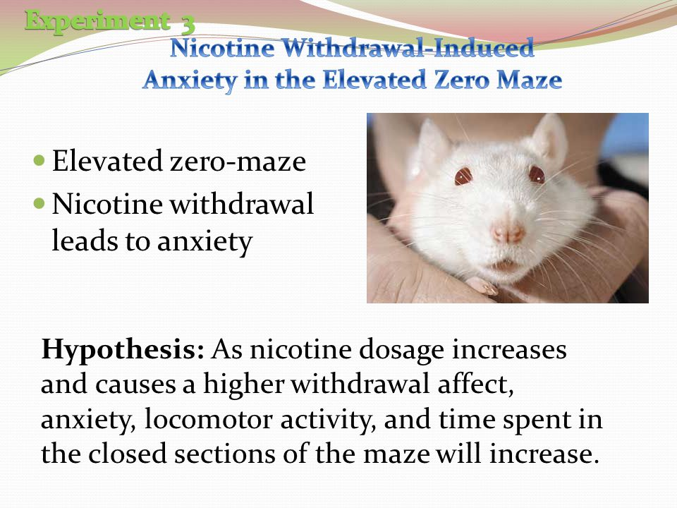 Nicotine Withdrawal-Induced Anxiety in the Elevated Zero Maze