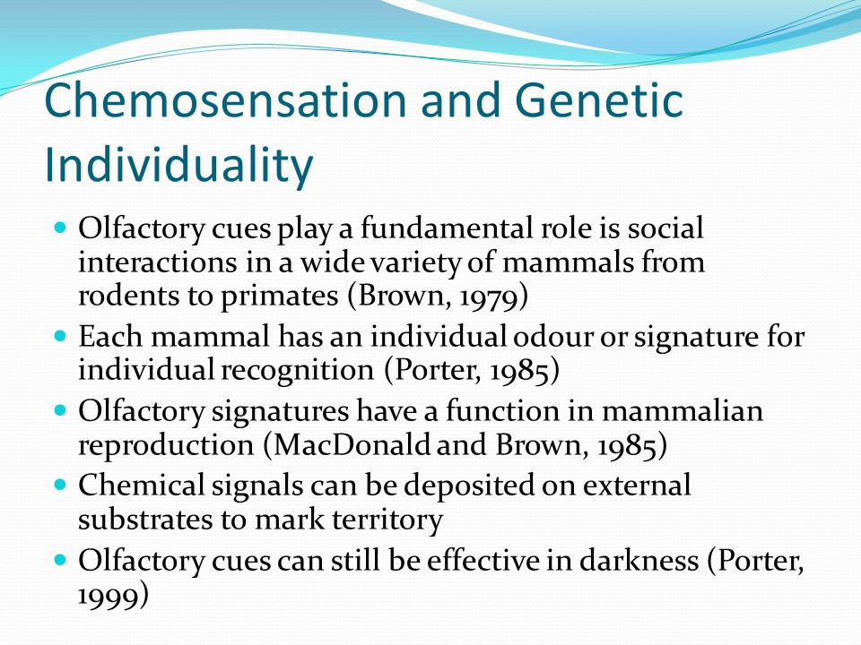 Chemosensation and Genetic Individuality
