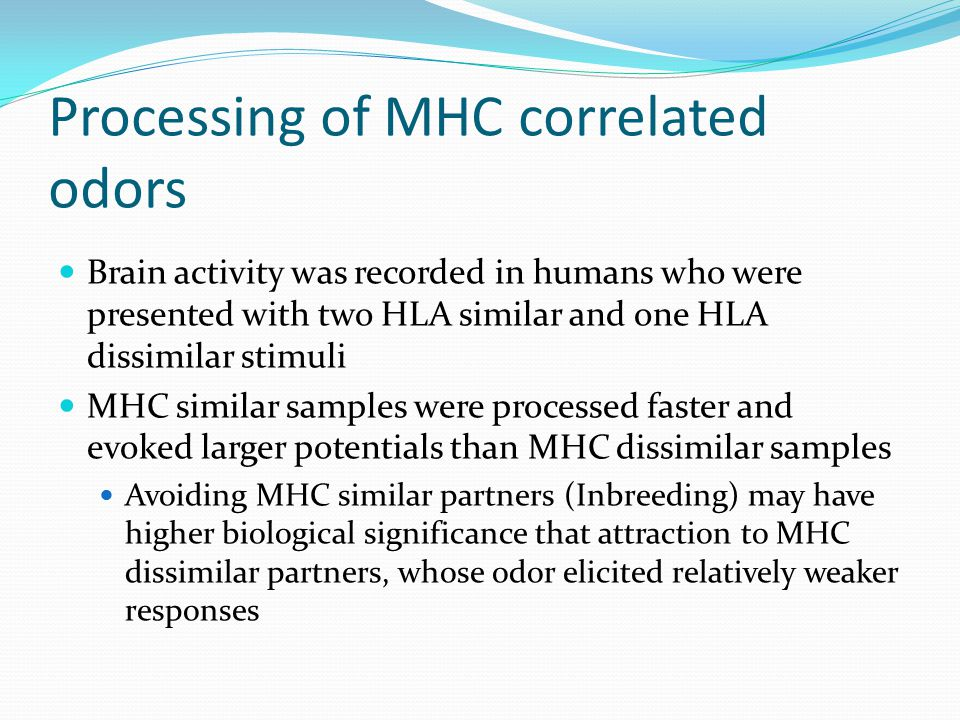Processing of MHC correlated odors