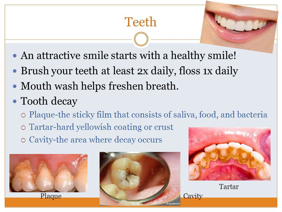 Teeth An attractive smile starts with a healthy smile!