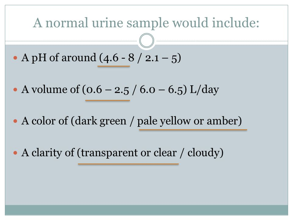 A normal urine sample would include: