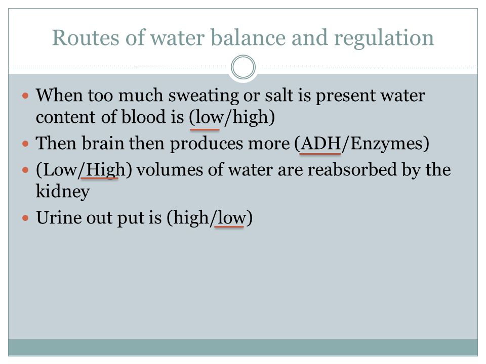 Routes of water balance and regulation