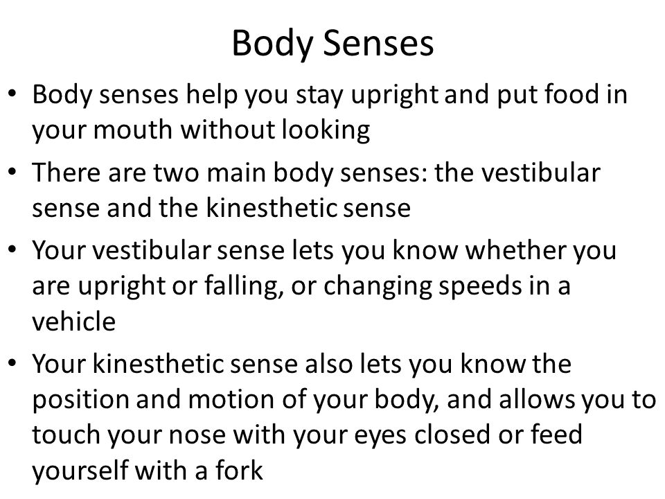 Body Senses Body senses help you stay upright and put food in your mouth without looking.