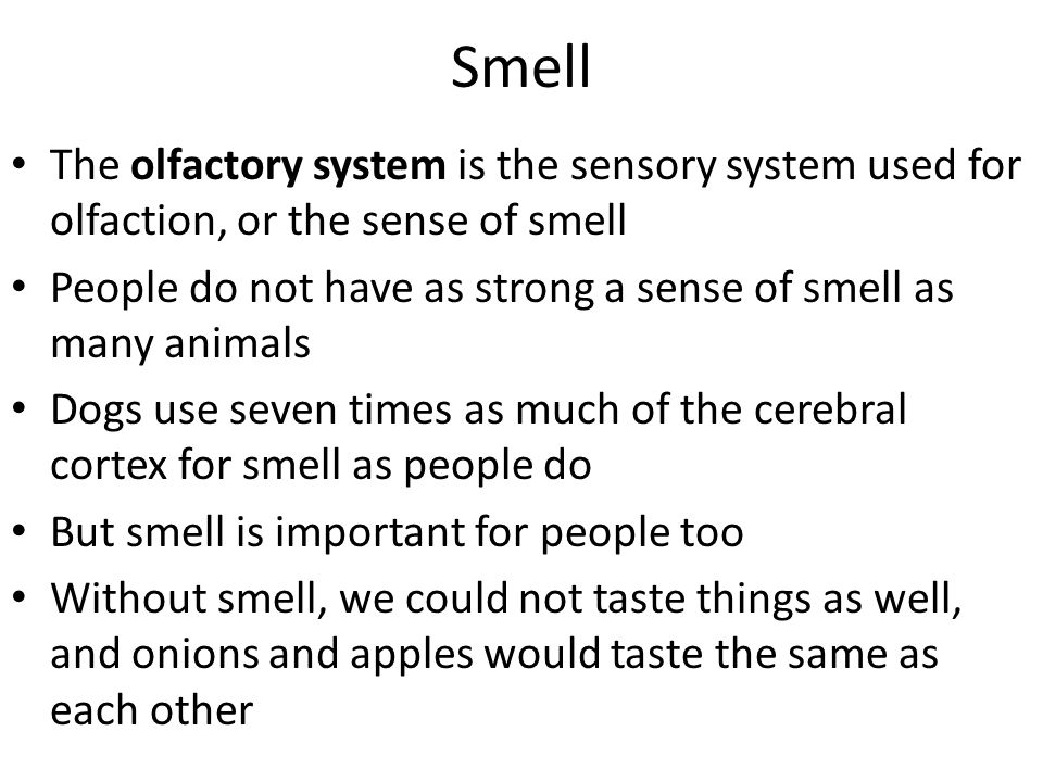 Smell The olfactory system is the sensory system used for olfaction, or the sense of smell.