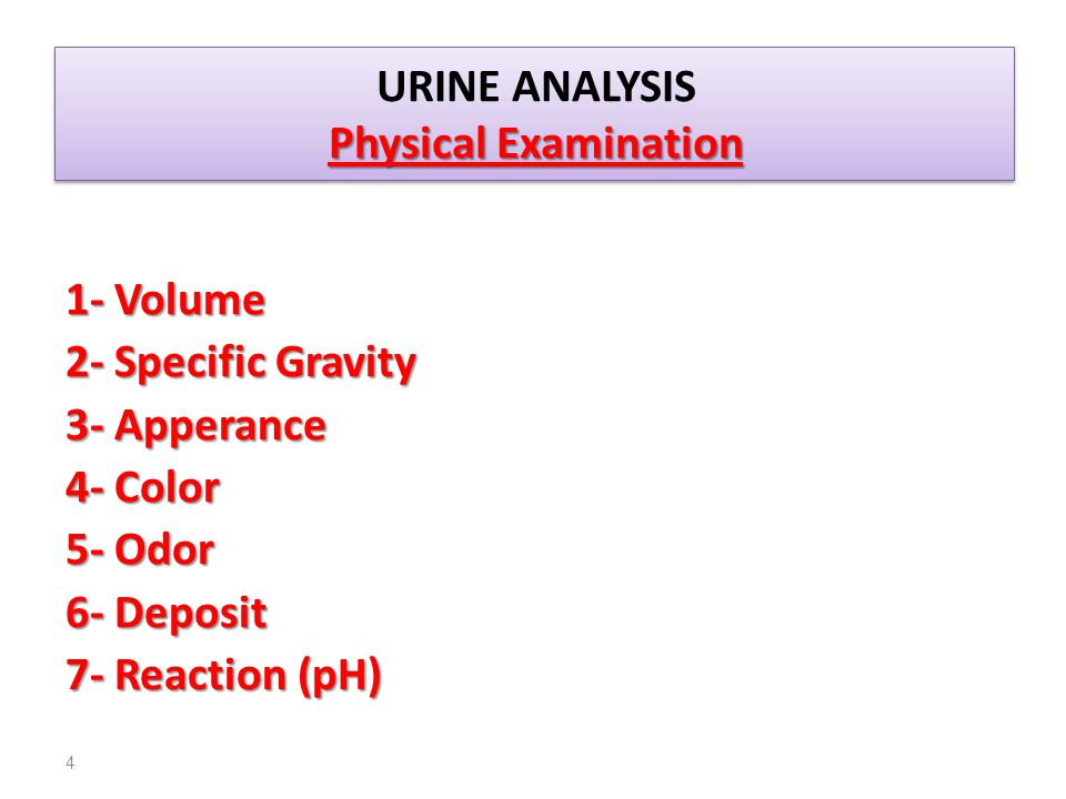 URINE ANALYSIS Physical Examination