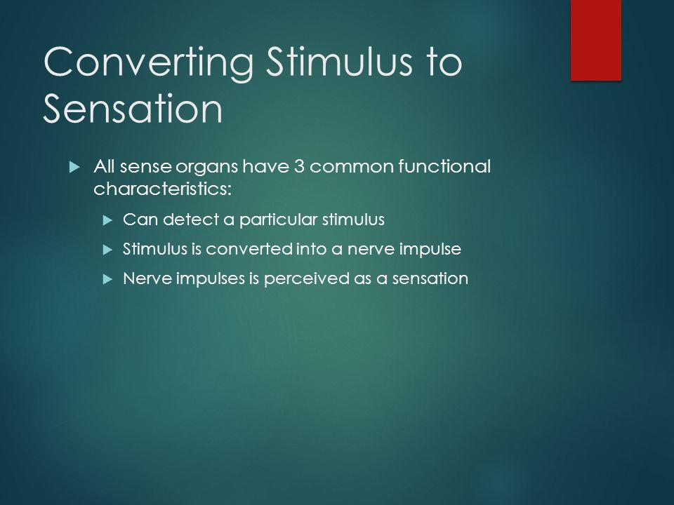 Converting Stimulus to Sensation
