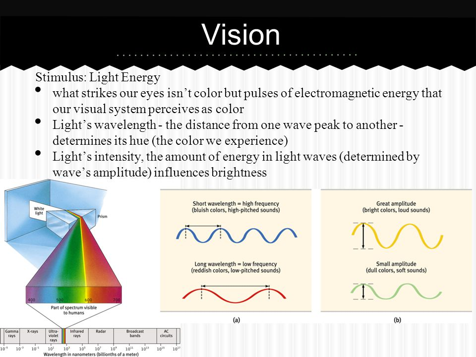 Vision Stimulus: Light Energy