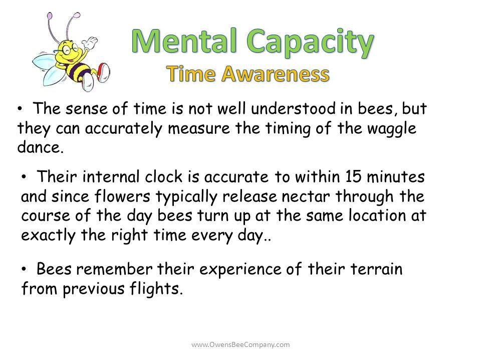 Mental Capacity Time Awareness
