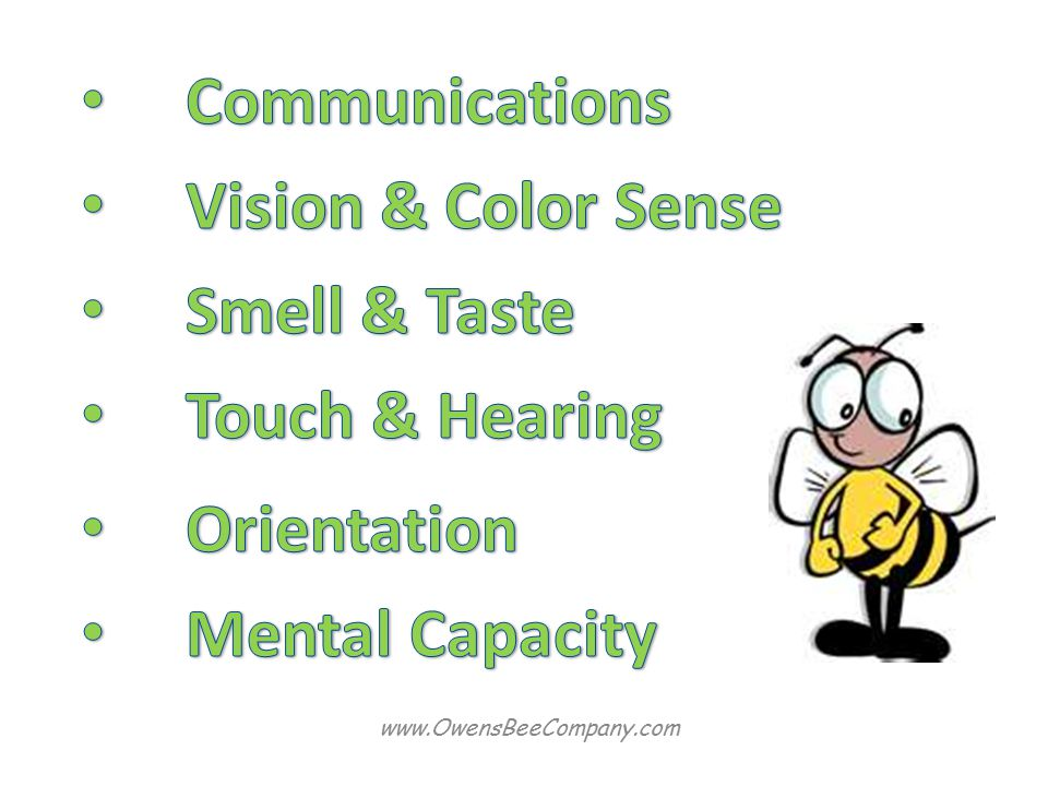 Communications Vision & Color Sense Smell & Taste Touch & Hearing