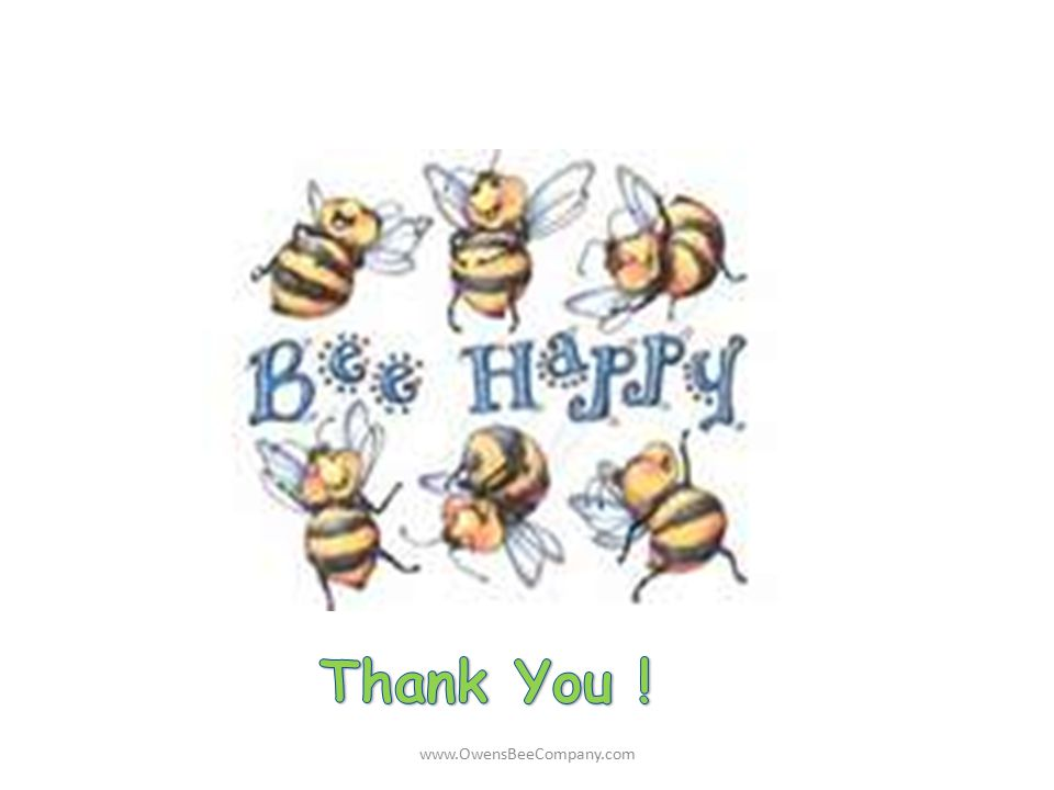 Thank You ! www.OwensBeeCompany.com