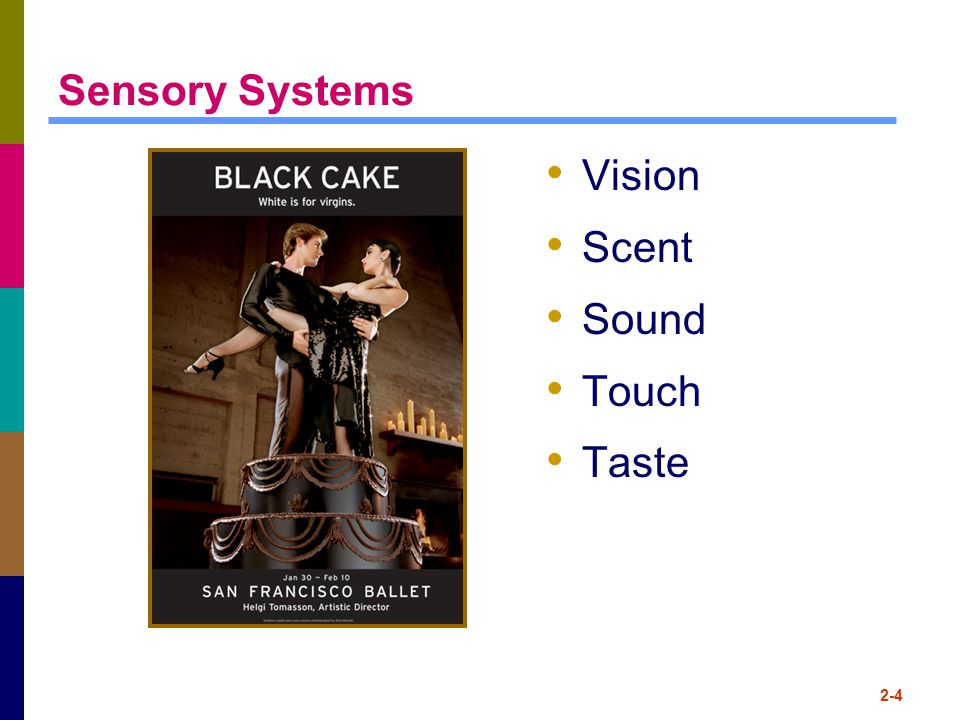 Sensory Systems Vision Scent Sound Touch Taste