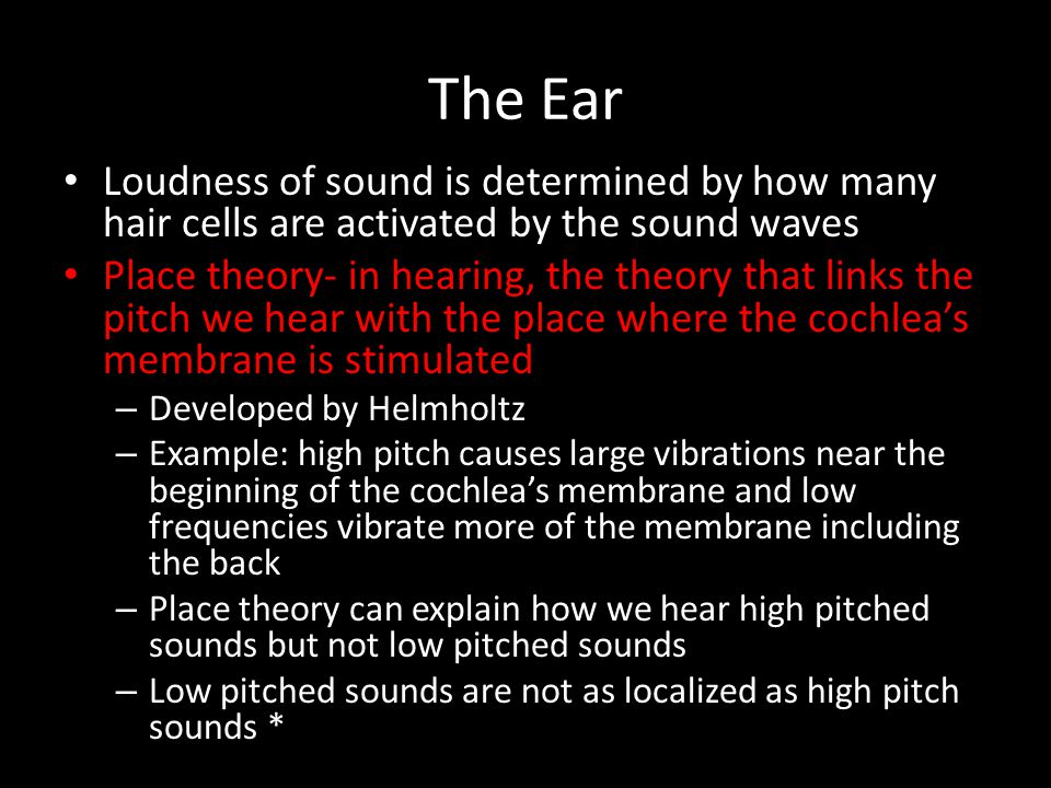 The Ear Loudness of sound is determined by how many hair cells are activated by the sound waves.