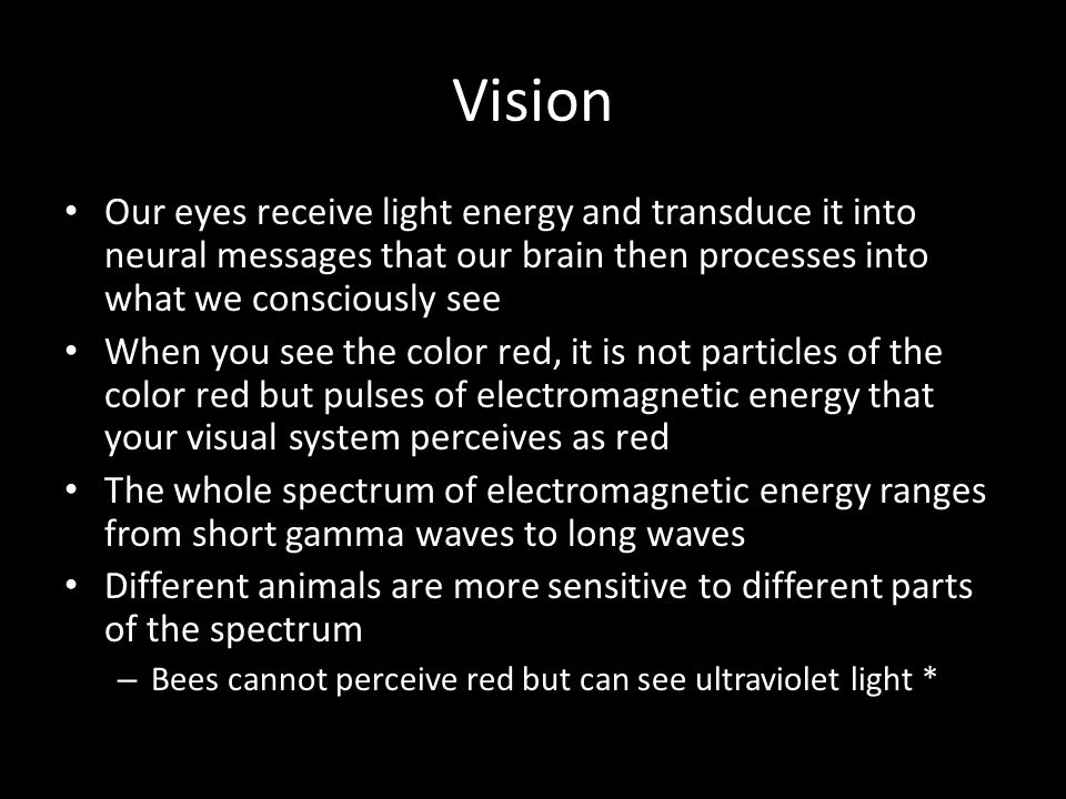 Vision Our eyes receive light energy and transduce it into neural messages that our brain then processes into what we consciously see.