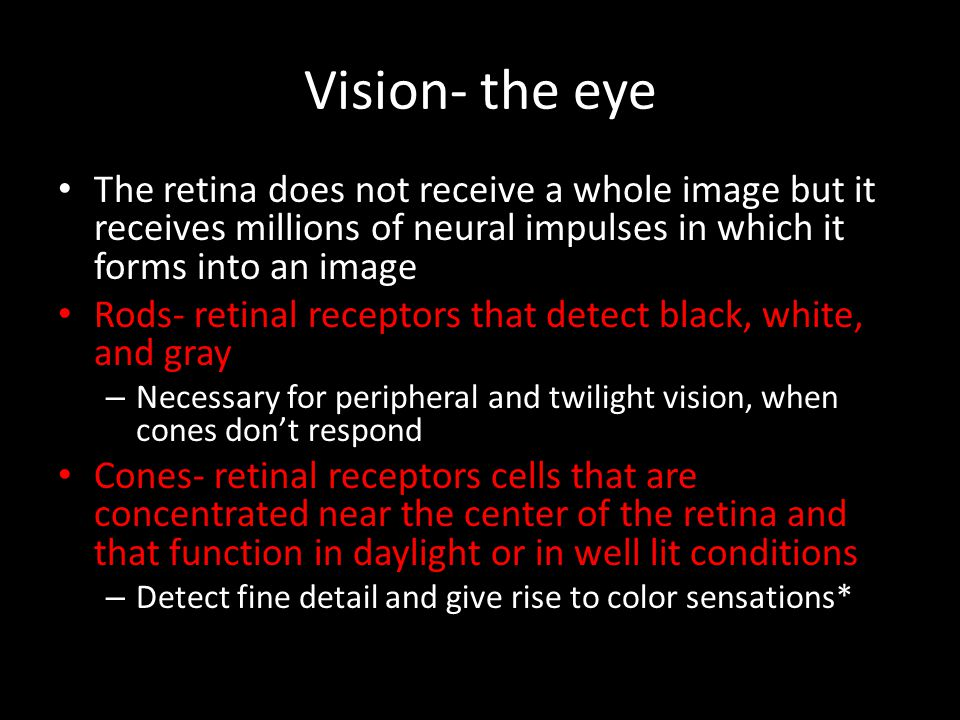 Vision- the eye The retina does not receive a whole image but it receives millions of neural impulses in which it forms into an image.