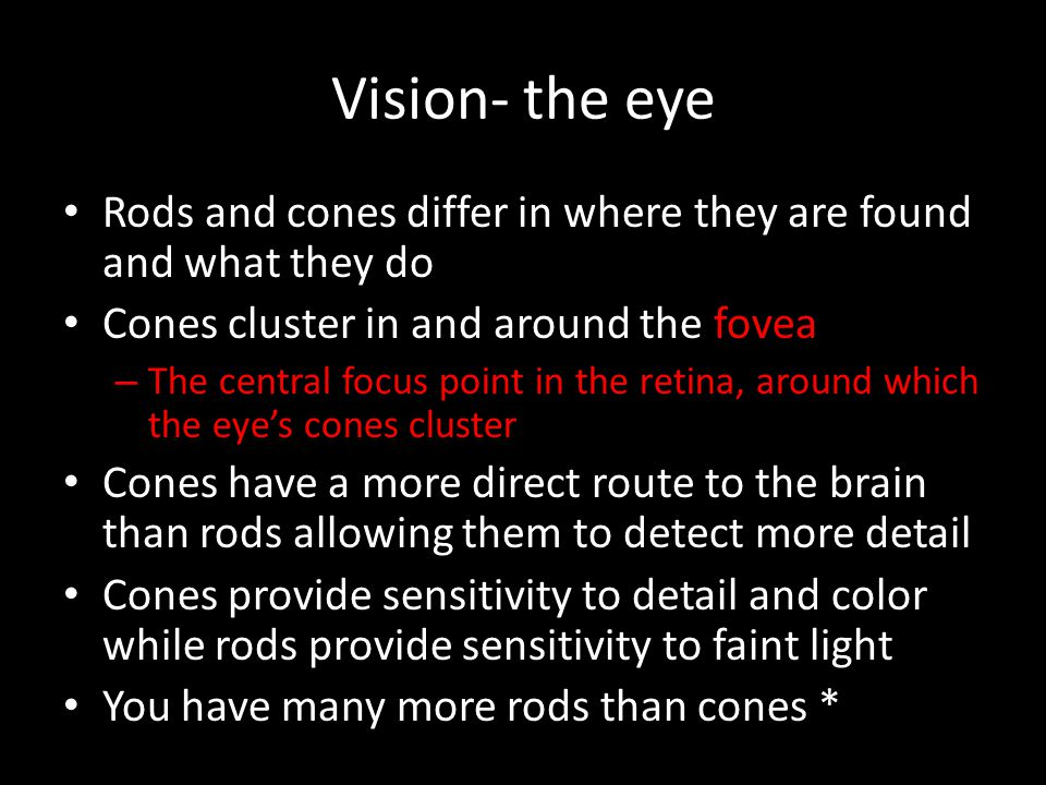 Vision- the eye Rods and cones differ in where they are found and what they do. Cones cluster in and around the fovea.