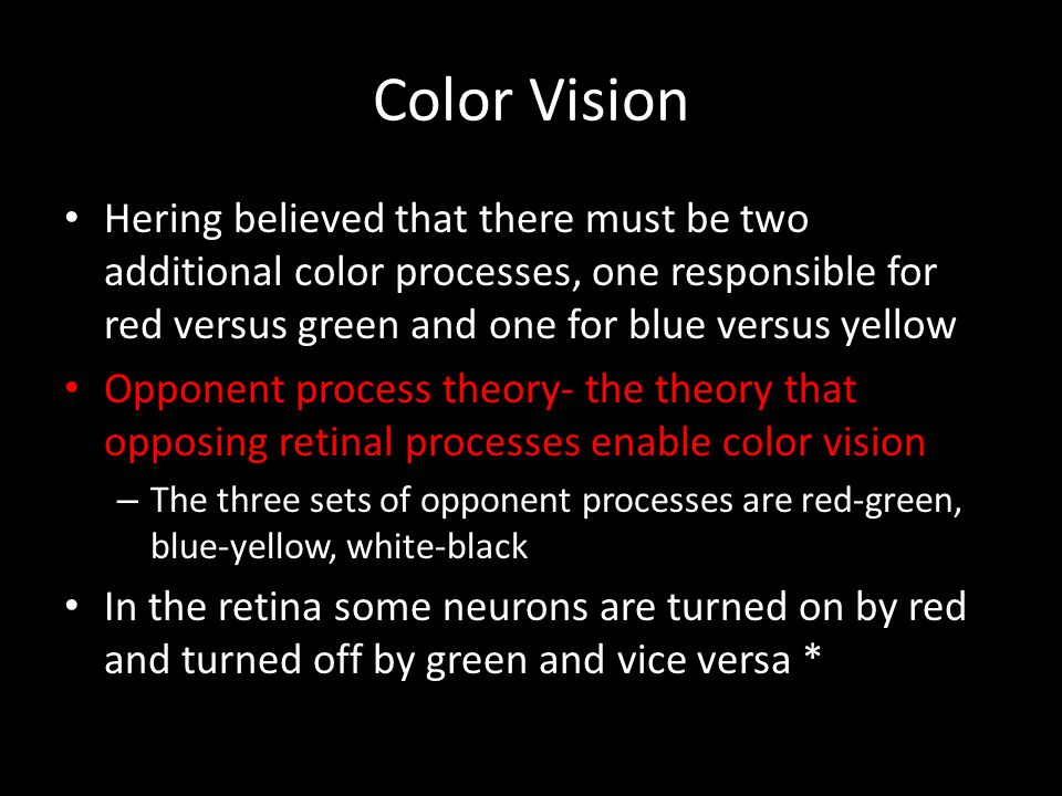Color Vision Hering believed that there must be two additional color processes, one responsible for red versus green and one for blue versus yellow.