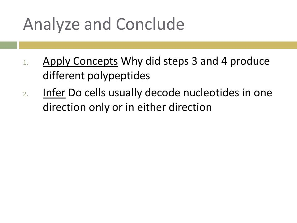 Analyze and Conclude Apply Concepts Why did steps 3 and 4 produce different polypeptides.