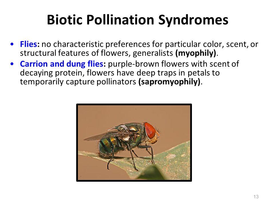 Biotic Pollination Syndromes
