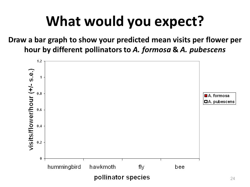 What would you expect Draw a bar graph to show your predicted mean visits per flower per hour by different pollinators to A. formosa & A. pubescens.