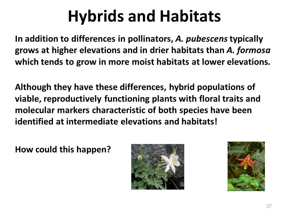Hybrids and Habitats
