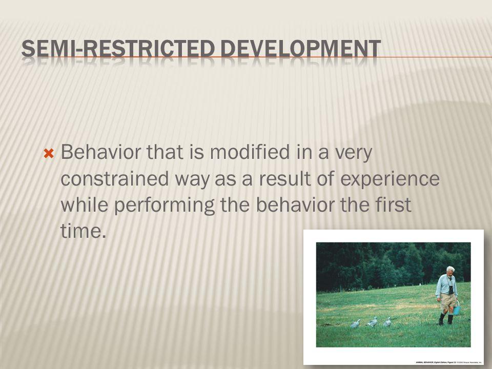 Semi-restricted Development