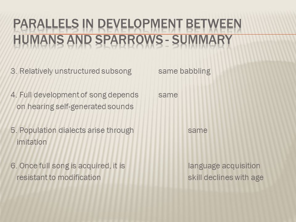 Parallels in development between humans and sparrows - Summary