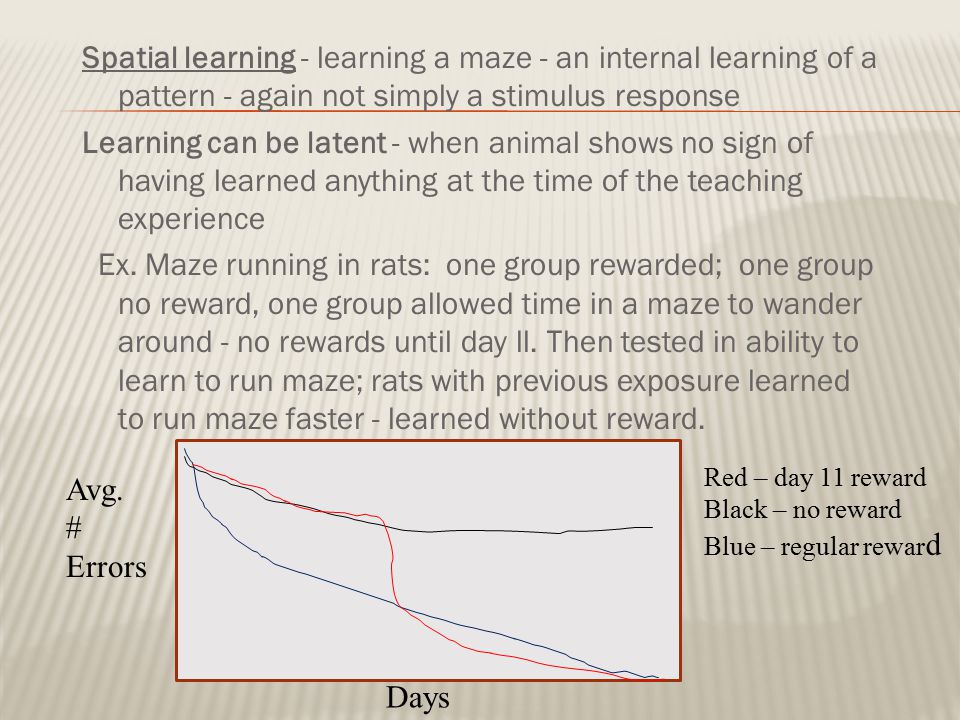 Spatial learning - learning a maze - an internal learning of a pattern - again not simply a stimulus response Learning can be latent - when animal shows no sign of having learned anything at the time of the teaching experience Ex. Maze running in rats: one group rewarded; one group no reward, one group allowed time in a maze to wander around - no rewards until day ll. Then tested in ability to learn to run maze; rats with previous exposure learned to run maze faster - learned without reward.