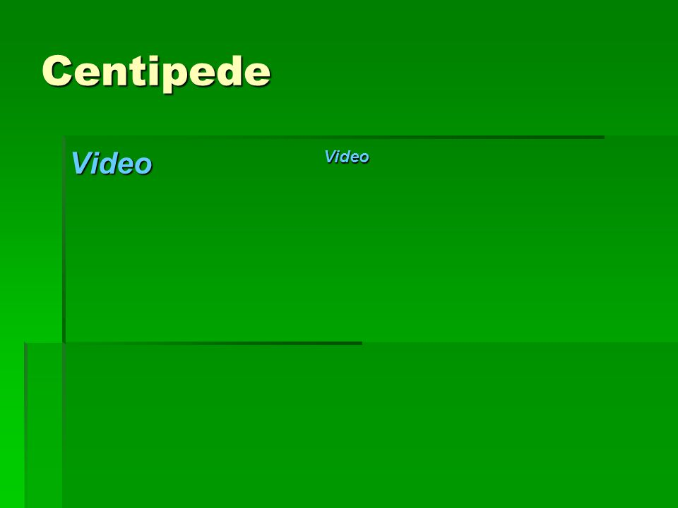 Centipede Video Video