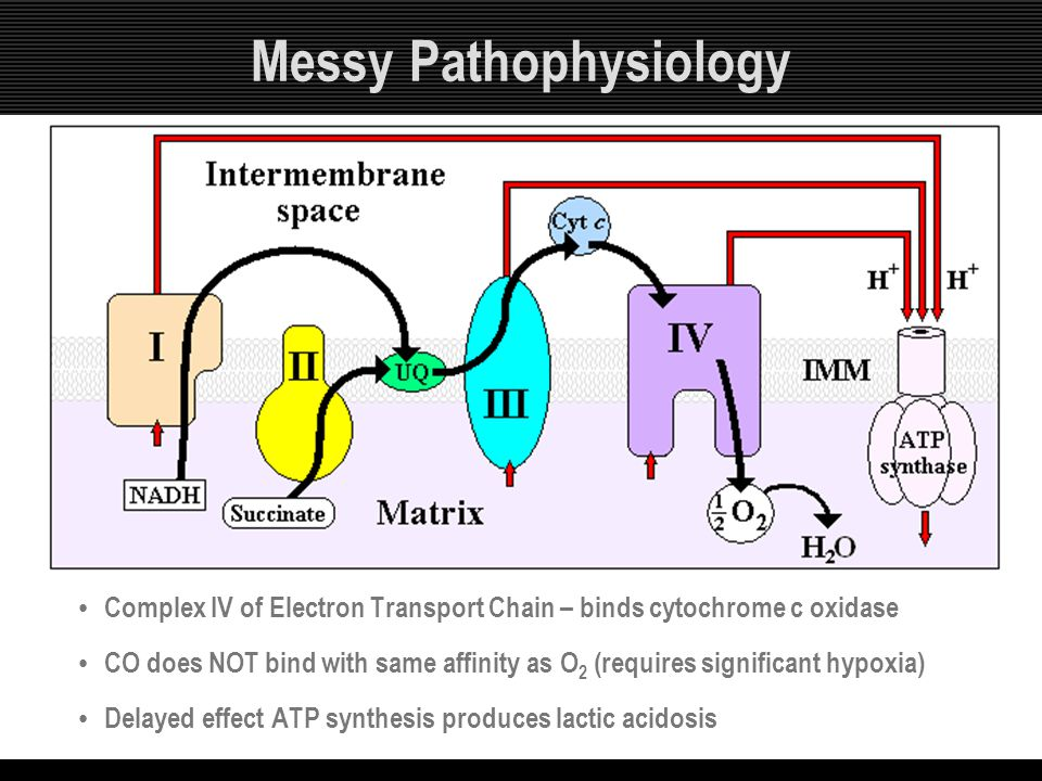 Messy Pathophysiology