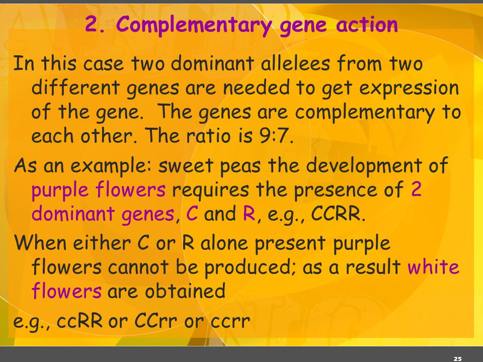 2. Complementary gene action