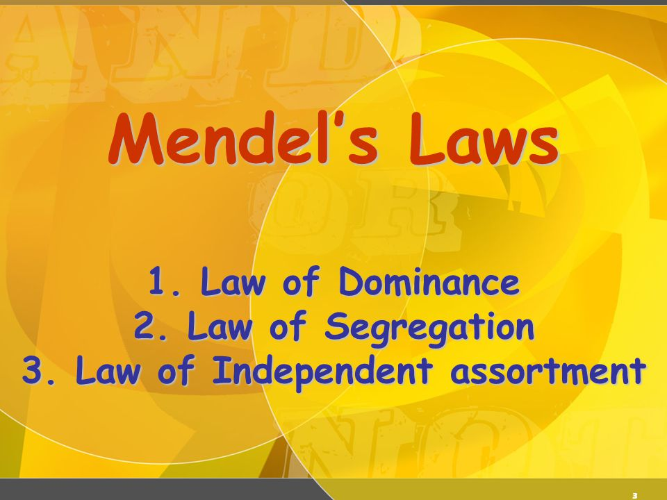 03/06/11 Mendel's Laws 1. Law of Dominance 2. Law of Segregation 3. Law of Independent assortment